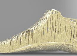 Podologie du Mont-Blanc