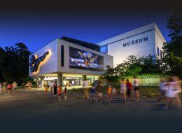 Muséum d'histoire naturelle (MHN) – Genève
